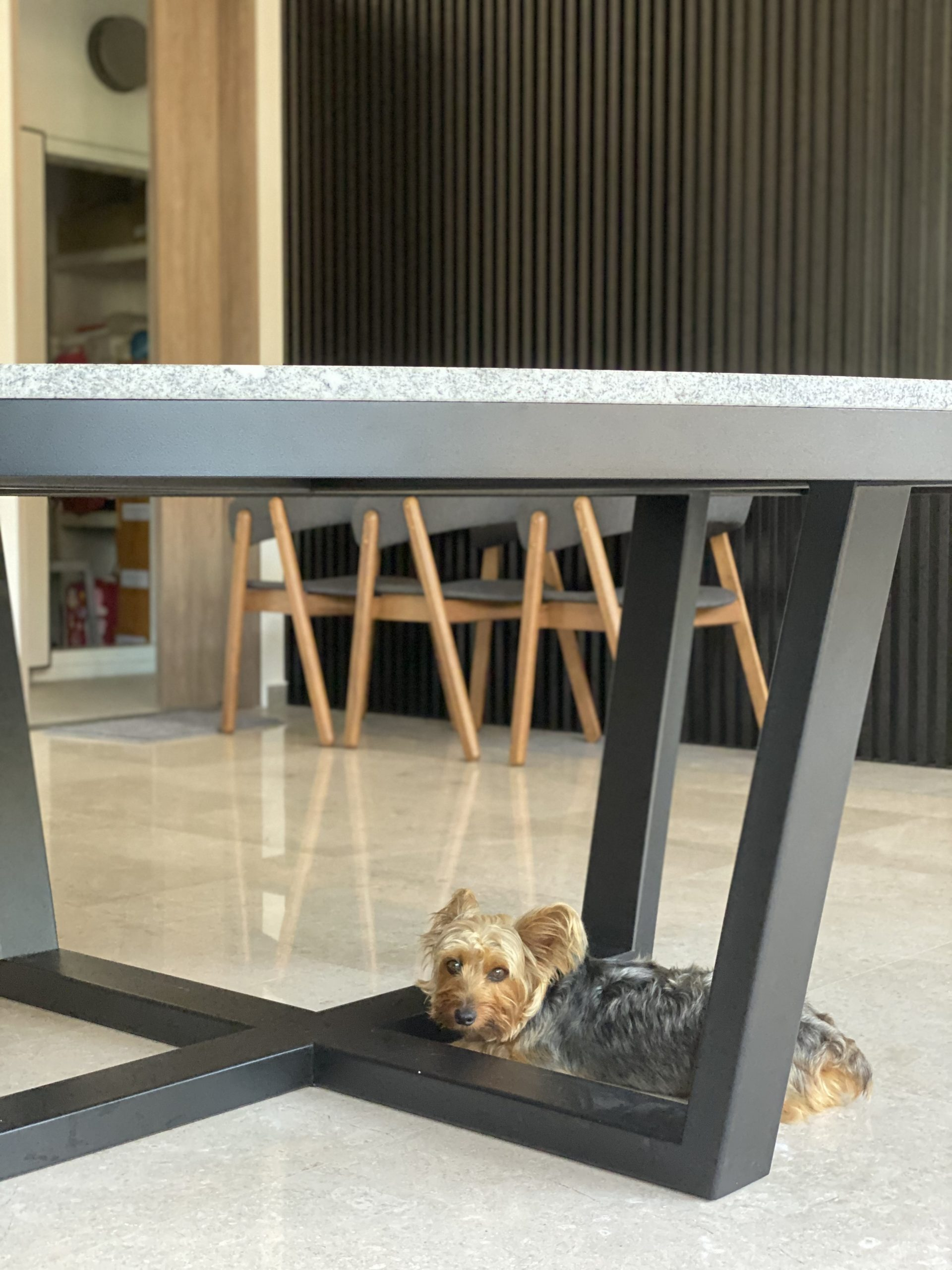 Dexter with Trimming Granite Dining Table (28)